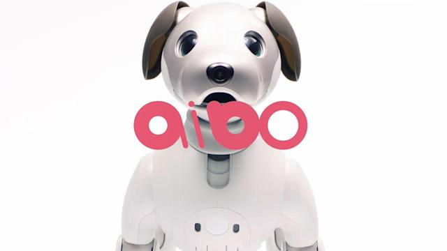 Sony's new Aibo pet robot goes on sale tonight in Japan