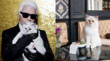 Karl Lagerfeld愛貓Choupette接代言工作了