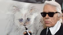 How can we celebrate the art of Karl Lagerfeld – who said such controversial things? Here's how I do it