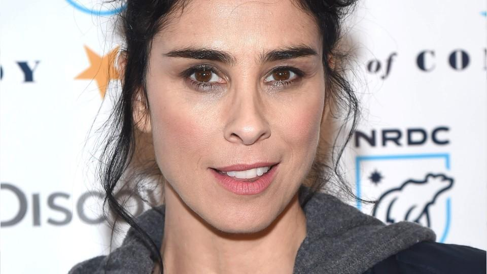 Sarah Silverman Posted a Photo of Her Naked Breasts to