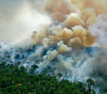 Brazil warns Biden not to trust Bolsonaro as he demands cash in exchange for climate action