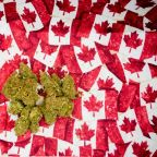 It Got Lost in the Hoopla, but Canopy Growth Had a Really Great Q1