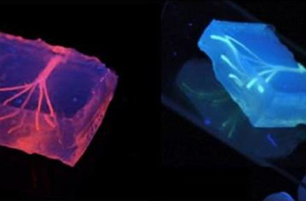 Researchers are using 3D printers to make blood vessels