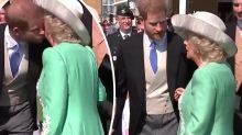Tender moment between Prince Harry and Camilla caught on camera