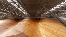 世貿組織認為中國的農產品貿易限制實施程序存在缺陷