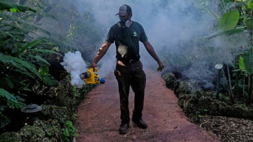 CDC Issues Travel Warning After 5 Infected in New Florida Zika Transmission