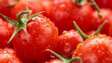 Eating tomatoes could improve sperm quality by up to 50 per cent, scientists claim