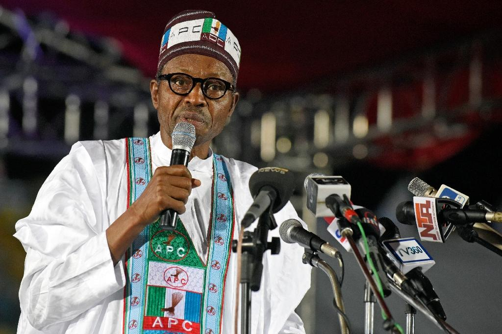 Muhammadu Buhari was the first opposition candidate in Nigeria's history to beat a sitting president in elections (AFP Photo/Pius Utomi Ekpei)