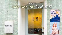 幫襯小店:Odd One Out貼地藝術