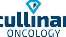 Cullinan Oncology, das Deutsche Krebsforschungszentrum (DKFZ) und die Universität Tübingen melden die Gründung von Cullinan Florentine zur Entwicklung von CLN-049, einen neuartigen bispezifischen Antikörper zur AML-Behandlung