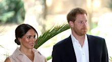 Palace insiders think Meghan is radicalising Harry and 'stirring the pot'