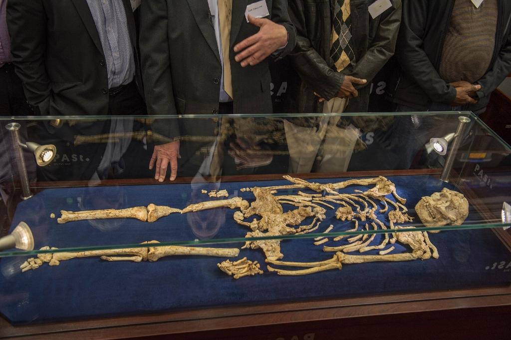 'Little Foot' skeleton goes on display in S.Africa