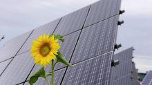 Bilanci di sostenibilità, in uno studio le opinioni dei consumatori