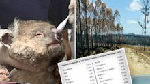 Staggering bushfire report reveals government's 'horrifying' effort to save wildlife