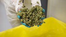 Tilray Shares Jump on Deal to Take Control of Biggest Holder