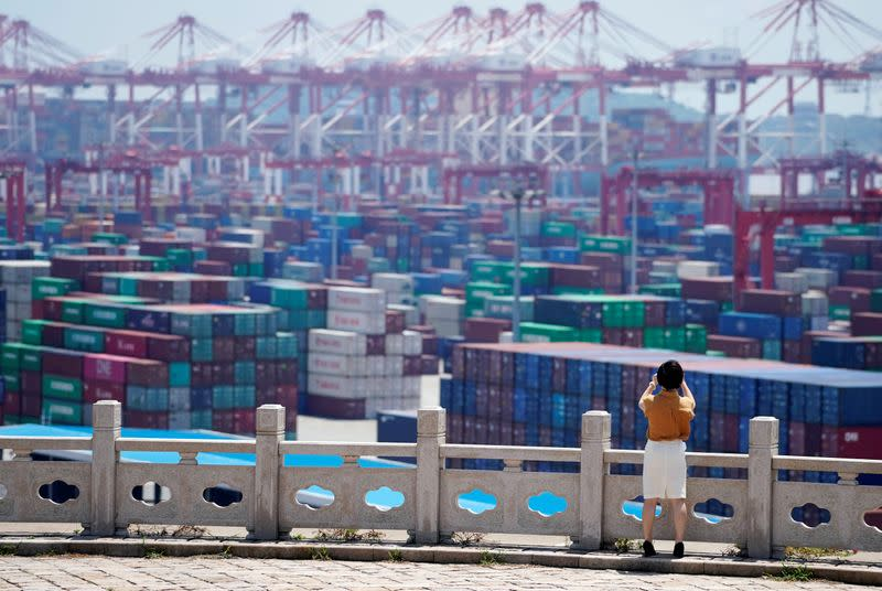 China November exports fall, but import growth hints of recovering demand