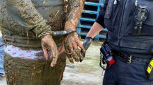Police suspect covered in poo after jumping into slurry pit while trying to escape officers