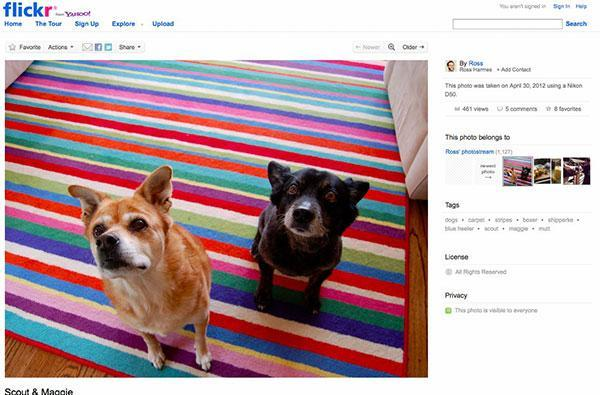 Flickr launches prettified 'liquid' layout, brings high-resolution eye candy to the forefront