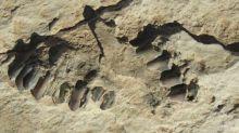 Des empreintes humaines vieilles de 120.000 ans découvertes en Arabie Saoudite