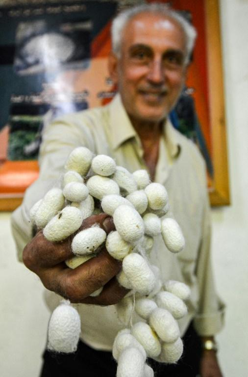 After Syria's war whisked away the silkworms from his mulberry trees, Saud instead turned his idle home workshop into a silk museum to celebrate the ancient craft (AFP Photo/MAHER AL MOUNES)