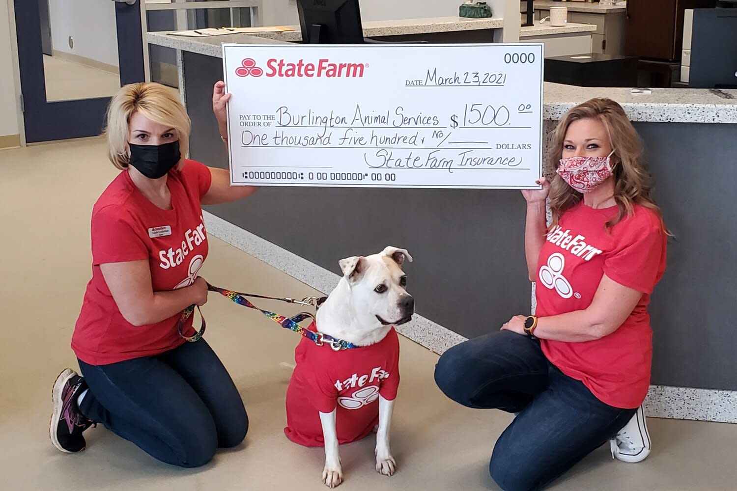 Shelter Dog Named 'Jake From State Farm' Gets Adopted ...