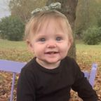 Police have arrested 'persons of interest' in the case of still-missing toddler Evelyn Boswell on car theft charges