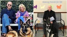 Joe Biden's Pets Also Create History as Major Becomes First Rescued Dog to Make it to White House
