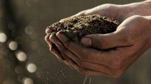 歐洲環境署:歐盟未能達成保護自然的目標