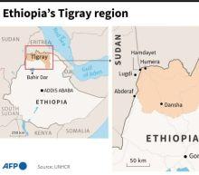 Ethiopia's Afar region urges civilians to fight Tigray rebels