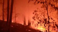 Schools Closed as Firefighters Battle Blazes Across New South Wales