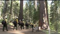Yosemite`s Fire Is 4th Largest In Calif. History