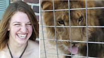 Deadly lion attack occurred after animal escaped cage