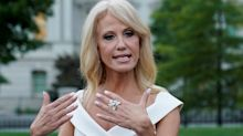 Kellyanne Conway tests positive for COVID, with 'mild' symptoms, as epidemic spreads through Trump circle