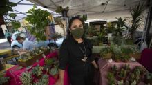 She wants to make sure you don't think of plants as 'just green accessories for the home'