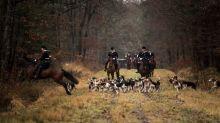 Mort d'Elisa Pilarski: après examen, aucun des chiens de chasse n'a été mordu, selon la société de vénerie