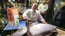 El Wall Street del pescado en Japón, donde un atún puede valer más de 1 millón de dólares