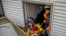 Rescuers save 6 pit bulls and 2 puppies from a flooded home in N.C. — where they survived by floating on couch cushions
