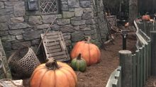 Where to spot 'Harry Potter' Easter eggs inside Wizarding World's new Hagrid's Magical Creatures Motorbike Adventure