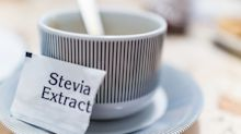 Study links artificial sweetener consumption in pregnancy to infants with higher levels of body fat
