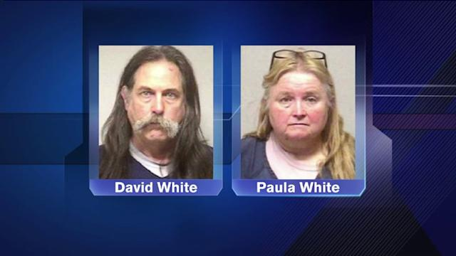 Bodies of 60 horses found; 2 charged in Wisconsin