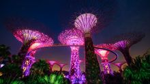 Gardens by the Bay to feature largest lantern display yet during Mid-Autumn Festival