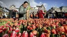 In globalised market, French growers embrace 'slow-flowers' movement