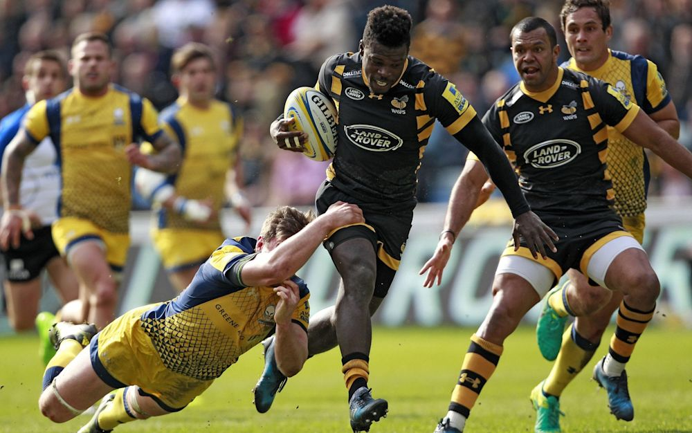 Wasps have been thrilling to watch this season - Rex Features