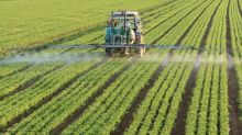 Fertilizers Industry Outlook: Near-Term Prospects Look Bright