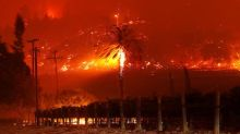 Wildfires scorch California wine country, forcing thousands to evacuate