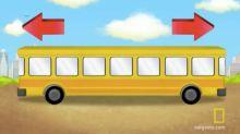 ¿En qué dirección va el autobús? Los niños aciertan más este acertijo que los adultos