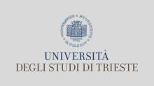 Studiare Ingegneria a Trieste: 24 Borse di studio da 2.800 euro per l'aa 2020/2021