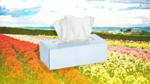 How Bad Will Spring Allergies Be This Year?