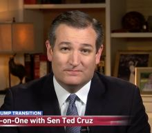 """""""The View"""" hosts corner Ted Cruz over attempt to blame Democrats for COVID-19 deaths"""