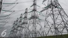 PLN Nyatakan Siap Bangun Pembangkit Listrik Tenaga Nuklir